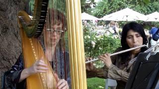 Black Orpheus Brazilian Jazz Harp and Flute