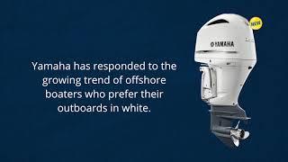 1991 yamaha 2 hp outboard service repair manual