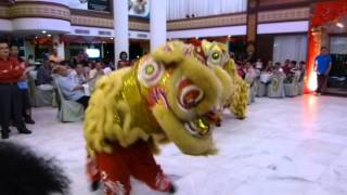 preview picture of video 'Gangnam Style Lion Dance'
