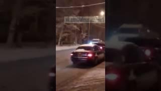 Бешенные собаки в Алматы