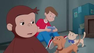Monkey Senses 🐵Curious George 🐵Kids Cartoon🐵Kids Movies🐵Videos For Kids