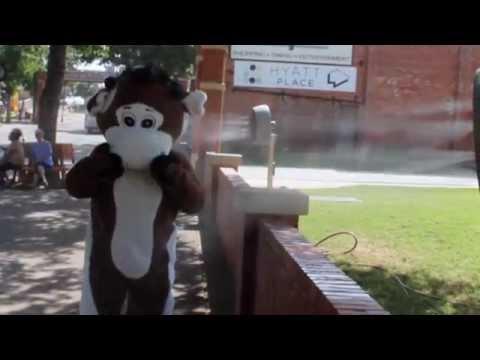 Rodeo Dental MooMoo's Ice Bucket Challenge