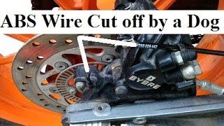 ABS Fail on KTM DUKE 390 - Dog bite.