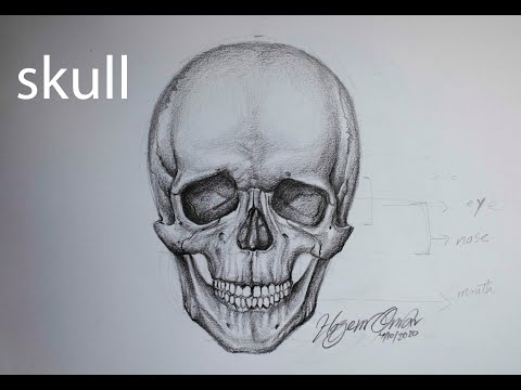 How to draw and shade a skull with pencil | front view
