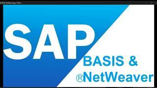 SAP BASIS Training vedios for beginners in Hindi/English