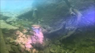 Diving Lake Travis Winter 2014