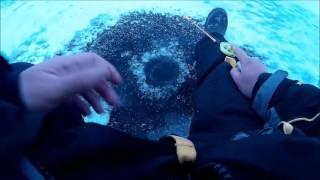 Рыбалка в вольске зимой на балансир