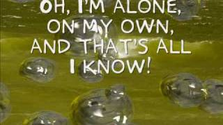 Taylor Swift-A Place In This World [With Lyrics]
