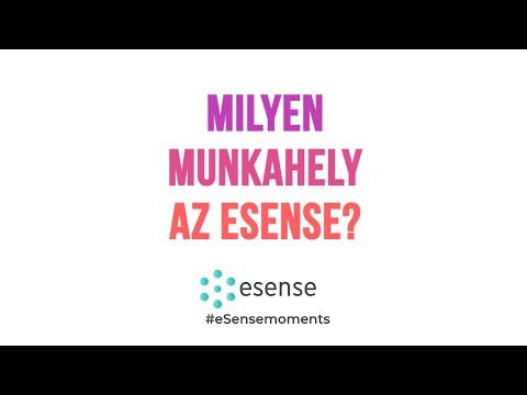 eSense  - Milyen munkahely az eSense?