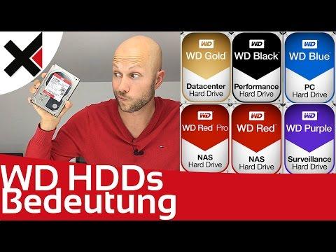 WD Black, Blue, Red, Purple, Gold was die Farben bei Western Digital bedeuten   iDomiX