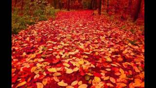 Осень на музыку Андрея Петрова (Осенний марафон).