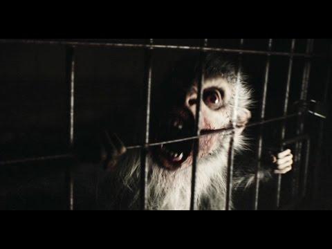[REC] 4 Apocalypse Clip 'Zombie Monkey'