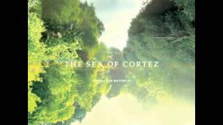 The Sea of Cortez - The Shores