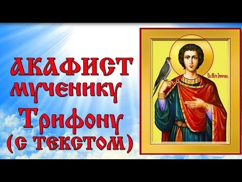 Акафист святому мученику Трифону (аудио молитва с текстом и иконами)