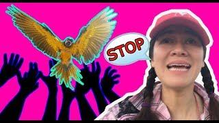 FRIENDLY BIRDS WILL GET STOLEN FIRST!
