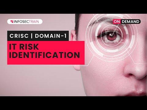 CRISC Training Domains   CRISC Training Video Domain 1 – IT ...