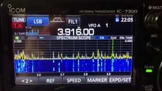 """3.916 MHz Net - """"Way Back Machine"""" On ICom 7300"""