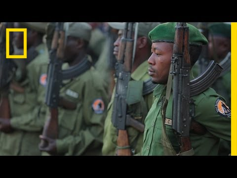 Gorilla Defenders: On the Front Lines of Illegal Wildlife Trafficking | National Geographic thumbnail