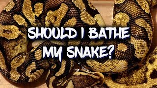 How often should I give my snake a bath?
