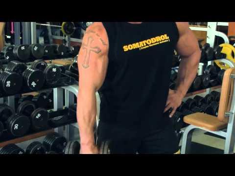 Ćwiczenia na pasku dla różnych grup mięśniowych