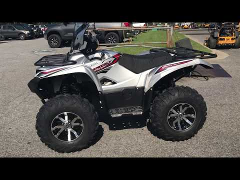 2018 Yamaha Grizzly EPS LE in Greenville, North Carolina - Video 1