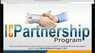 IC Business Opportunity Overview