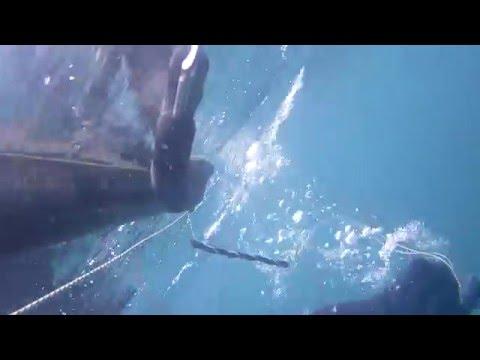 Pesca Submarina en L'Escala - Juan Aguilar