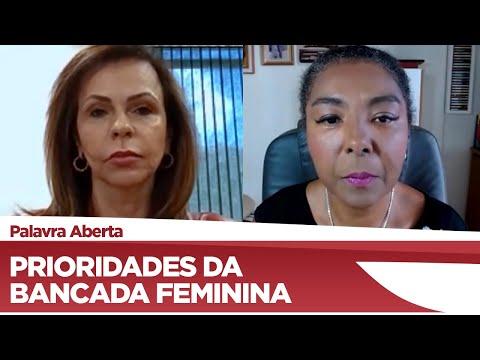 Professora Dorinha fala sobre as prioridades da bancada feminina - 04/03/21