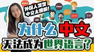 越来越多人学汉语,却无法成为世界语言的原因?中文,英文,西班牙文比一比!【这件小事 EP9】