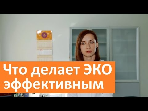 Что делает ЭКО эффективным. ГК Мать и дитя об эффективности ЭКО.