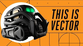 Vector: Anki's tiny robot that wants to hang