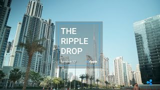 The Ripple Drop - Episode 12