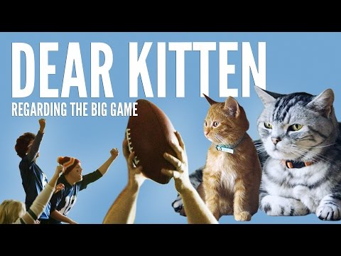 Friskies Commercial for Super Bowl XLIX 2015 (2015) (Television Commercial)