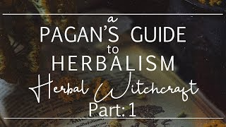Herbal Witchcraft Part 1 II How Theyre Used, The Magick Of Plants  + Book Recommends!