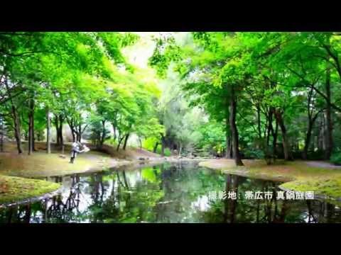 北海道に真鍋庭園という日本一のコニファーガーデンがあるそうです!