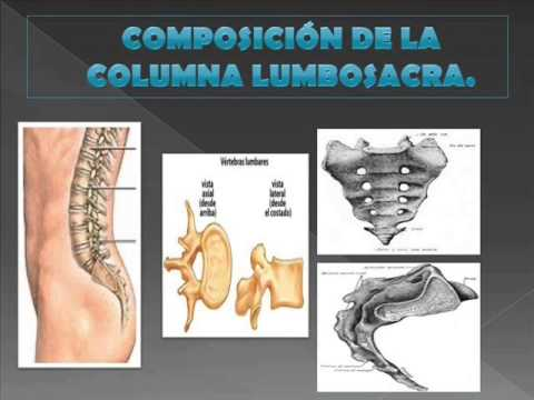 Hernia de la gimnasia de tratamiento lumbar