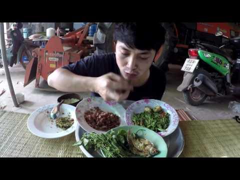 เวิร์มจากประเทศไทย