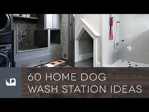 60 Home Dog Wash Station Ideas