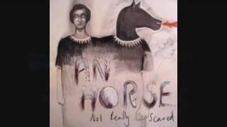 AN HORSE - Shoes Watch