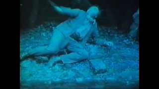 Antony and the Johnsons - Blue Angel