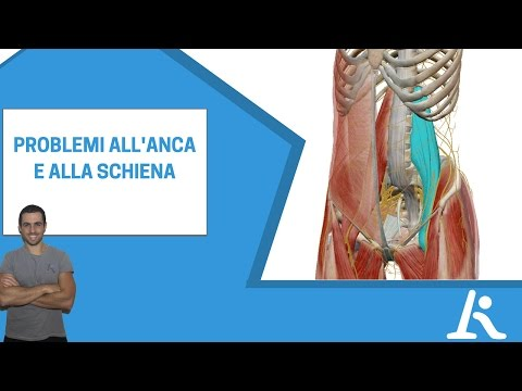 Displasia dellanca nel video Komorowski neonato