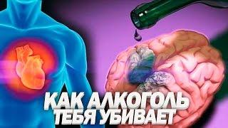 ВЛИЯНИЕ АЛКОГОЛЯ НА ОРГАНИЗМ | Почему 90% Людей Уже Алкоголики - YouTube