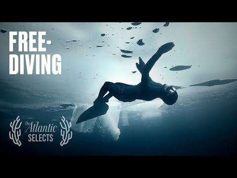 Free-Diving Under Ice, There Is 'No Place for Fear'