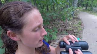 How To Focus Your Binocular
