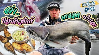 ล่าปลาค้าวยักษ์ ด้วยไส้ปลาทู มาทอดน้ำปลา [หัวครัวทัวร์ริ่ง] EP.62