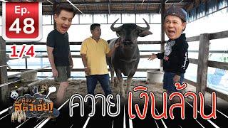 ควายไทยเงินล้าน - เพื่อนรักสัตว์เอ้ย EP 48 (1/4)