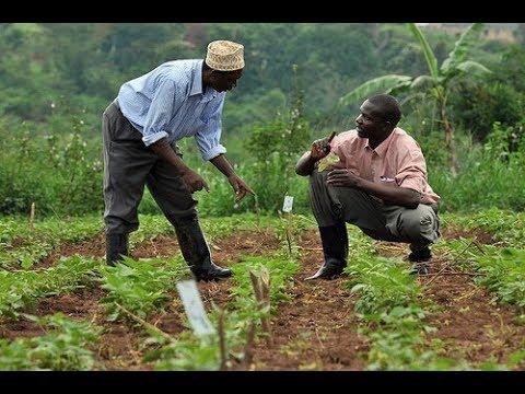 World Bank Intervention Program, FADAMA III Kicks Off