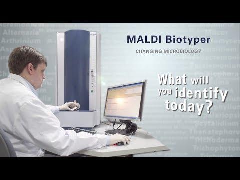 MALDI Biotyper System