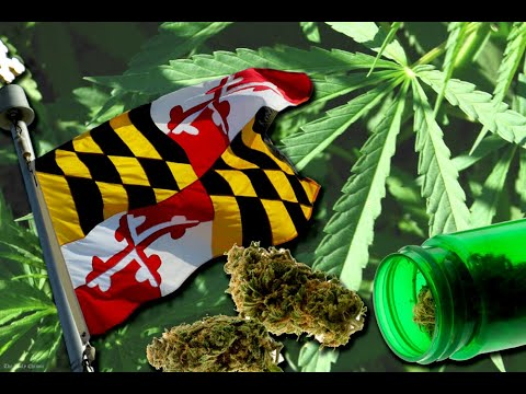 Getting Homegrow for Medical Marijuana Patients in Maryland