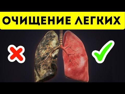 Мощнейшая чистка легких от смол, никотина и токсинов